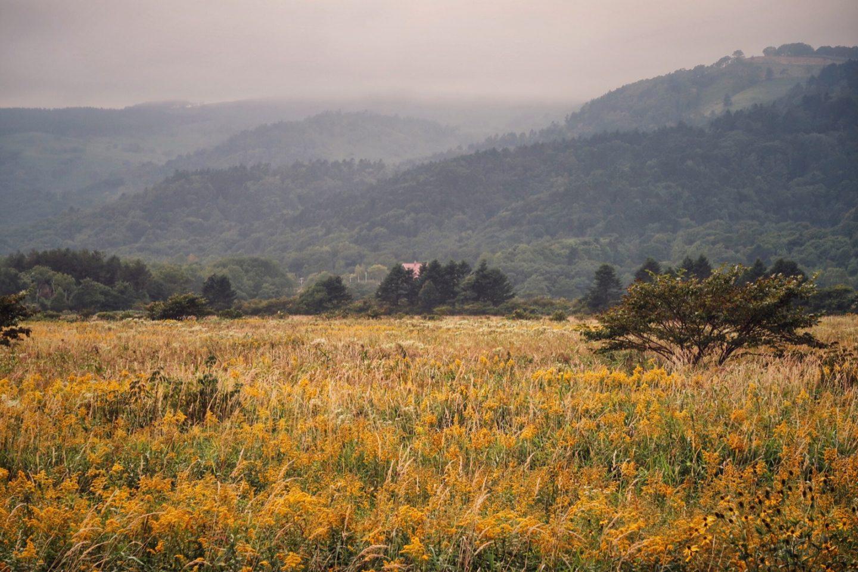 Erstens kommt es anders… – Radtour durch Japan Teil 4